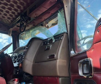 Turkey survives crash through windshield on Minnesota highway