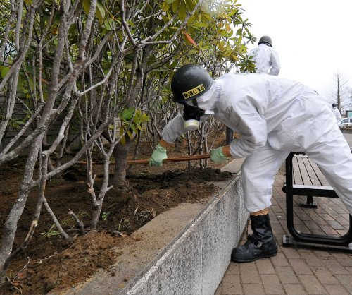 Compound protects crops from radiation-contaminated soil