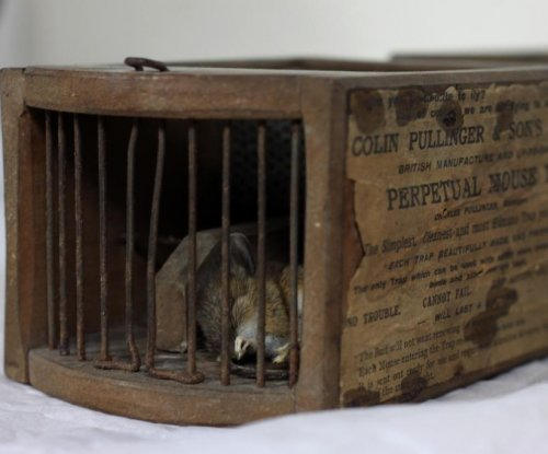 Museum-invading mouse ensnared by display's 155-year-old mousetrap