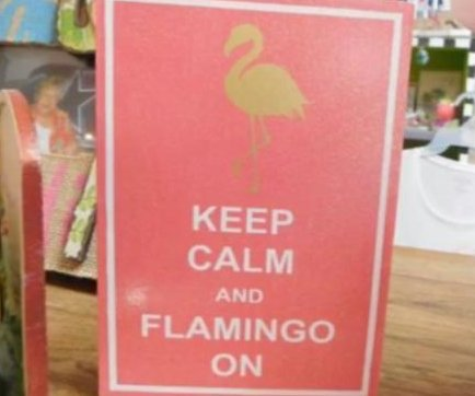 Florida woman's 793 flamingo items earn Guinness World Record