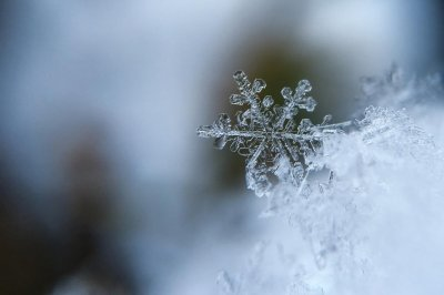 Scientists unsure if there is an upper limit to snowflake size