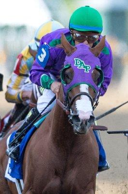 Horse racing roundup