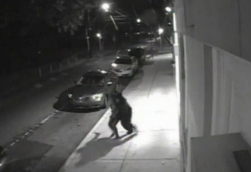 Police release video of Germantown, Pa., abduction