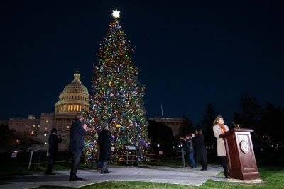 Pelosi lights 2020 U.S. Capitol Christmas tree