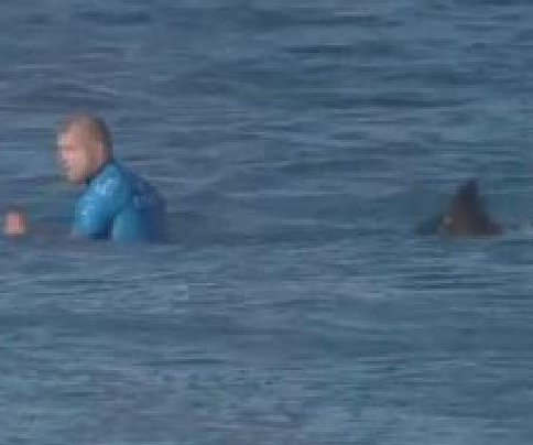Pro surfer barely escapes shark in South Africa; Near-miss captured on live TV