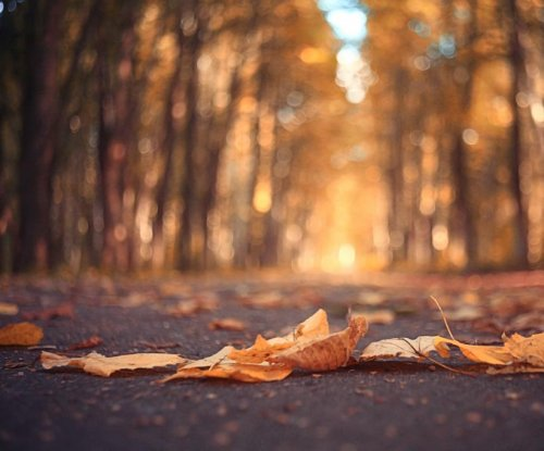October was easily the warmest on record; 2015 could be warmest year