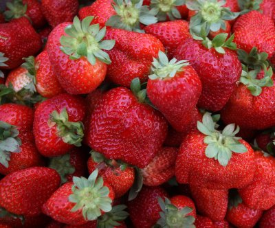 Study reveals genetic history of the cultivated strawberry