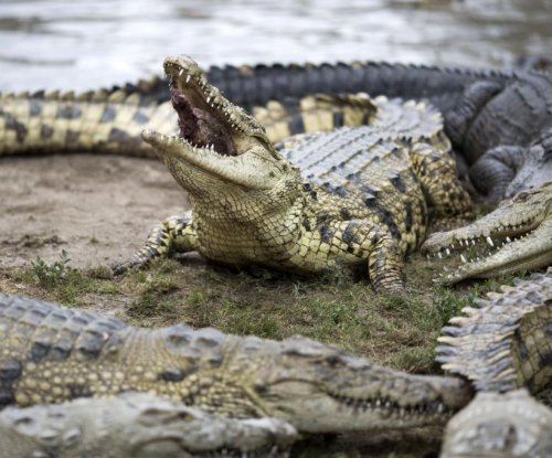 Newspaper reporter killed by crocodile while on vacation in Sri Lanka