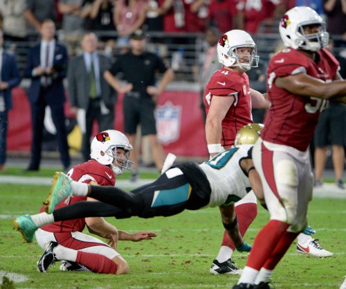 Arizona Cardinals sign P Andy Lee to extension