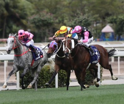 With most U.S. horse racing canceled, Japan, Australia, Hong Kong carry on