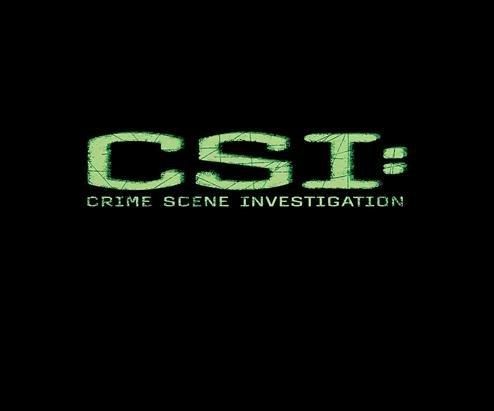 'CSI' bids farewell after 15 seasons with emotional season finale