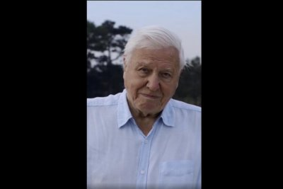 David Attenborough sets record after joining Instagram