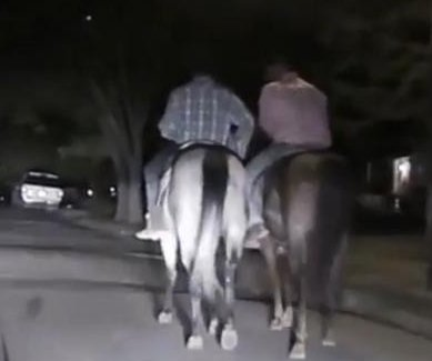 Two men on horseback flee police after rodeo fight
