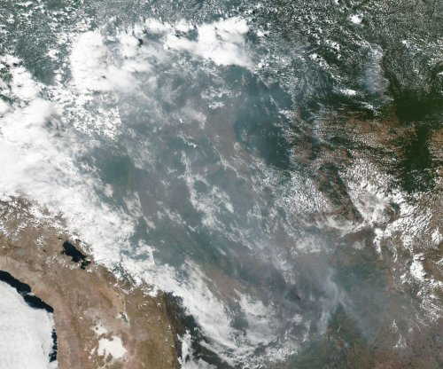 U.S. environmental group Earth Alliance pledges $5M to combat Amazon fires