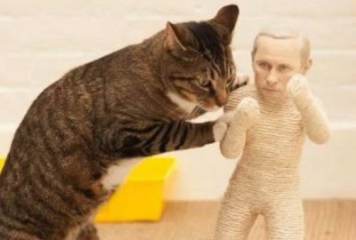 Online security service starts selling Kim Jong Un and Vladimir Putin cat-scratch posts