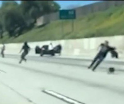 Loose dog blocks highway in California