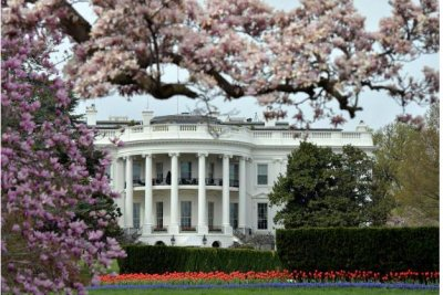 White House names 16 Fellows to learn about the federal government