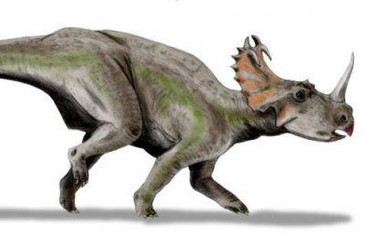 Modern microbes found living inside dinosaur bones