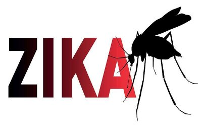 New case of local Zika infection reported in Florida