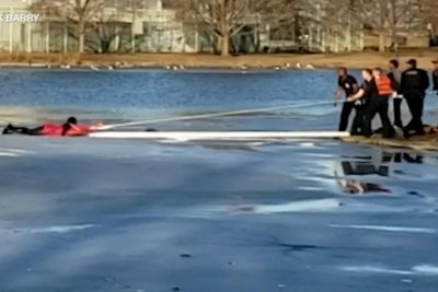 Woman falls into icy Chicago lagoon while trying to rescue dog