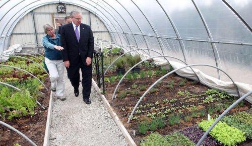 'Right to farm' amendment barely passes in Missouri