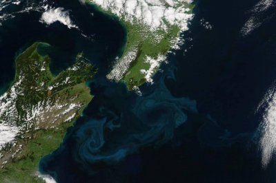 New Zealand represents Earth's eighth continent