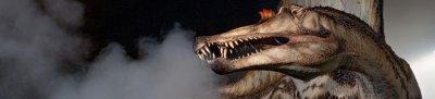 Skeleton of Spinosaurus, largest-known carnivorous dinosaur, unveiled