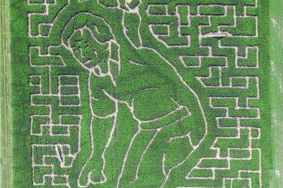 Ohio-corn-maze-paus-tribute-to-Jack-Nicklaus