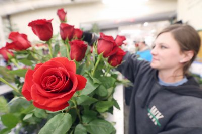 Americans to spend record $27.4B for Valentine's Day, survey says