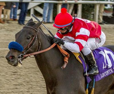Pegasus World Cup in Florida tops weekend horse racing