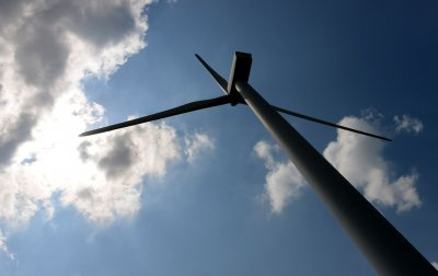 U.S. weighs area off New York's coast for wind energy