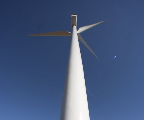 Renewable energy on the rise, IEA finds