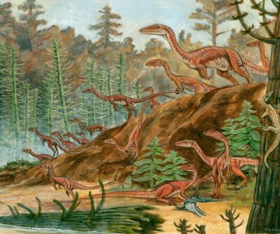 Study: Growth rates among dinosaurs were highly variable