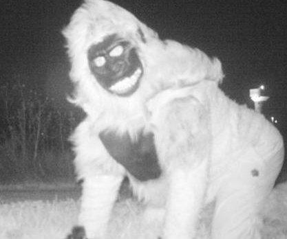Cougar-seeking wildlife cams in Kansas snap bizarre creatures -- humans