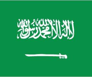 Beheading of child rapist marks Saudi Arabia's first execution under new king