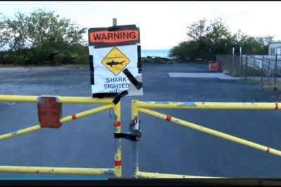 Hawaii woman killed in shark attack; sightings in California beach