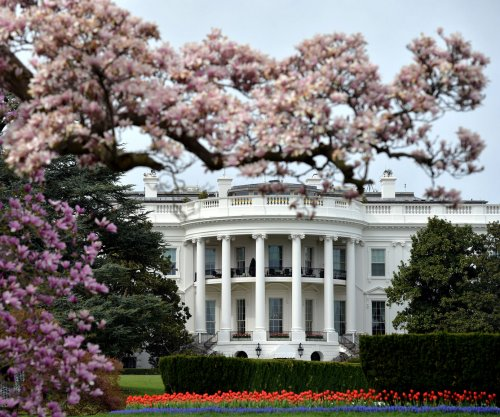 Intruder jumps White House fence, quickly arrested