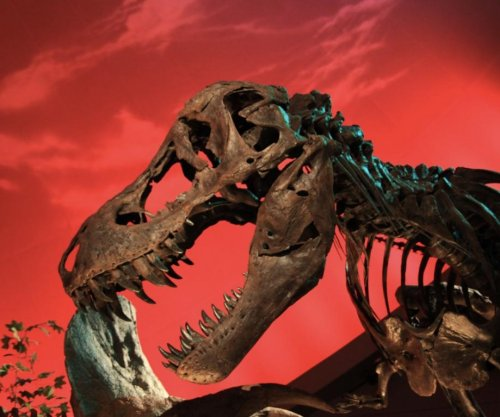 T. rex collagen proves 'Jurassic Park' an impossibility