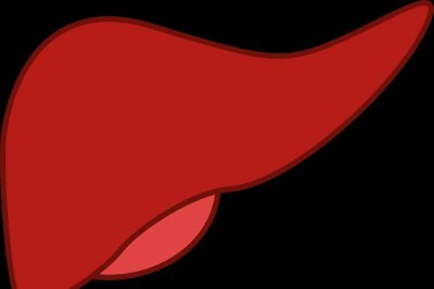Elevated hormone may help doctors spot rare liver condition