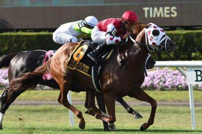 Henley's Joy upsets, Concrete Rose cements status in weekend turf racing