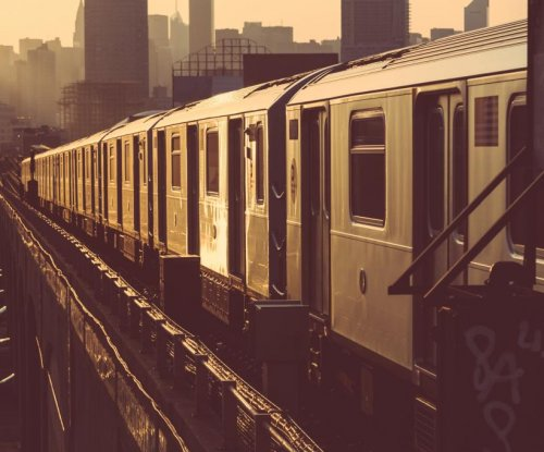 Woman drops bugs, urinates on N.Y. subway car