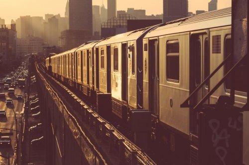 Woman drops bugs, urinates on N.Y. subway car