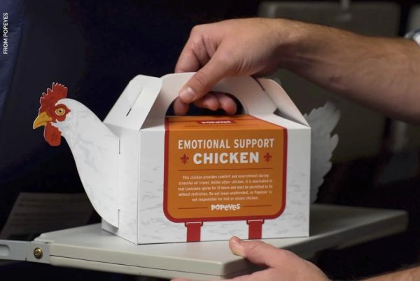 look philly airport popeyes selling emotional support chicken upicom