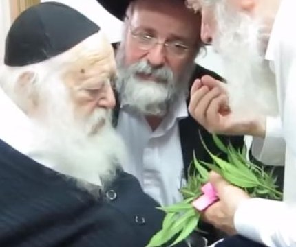 Ultra-Orthodox rabbi declares medical marijuana kosher for Passover