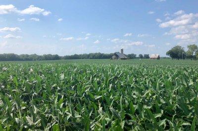 Battling tariffs, Iowa soy farmers visit China on trade mission