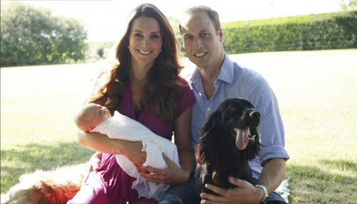 Prince William's new royal portrait slammed on Twitter