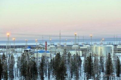 Arctic development left Russian environment damaged