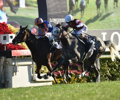 Japan stars in Hong Kong racing; Maximum Security wins Grade I Cigar Mile