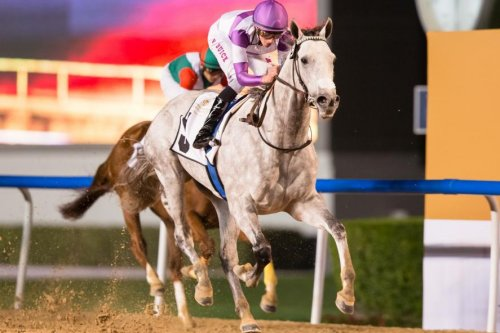 $20 million Saudi Cup, Fountain of Youth top weekend horse racing action