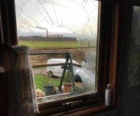 Swan crashes through window into woman's bathroom